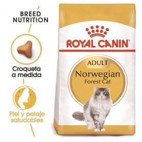 Pienso para gatos Royal Canin Norwegian Forest Cat
