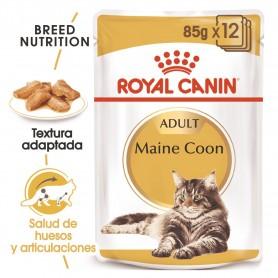 Comida húmeda para gatos Royal Canin Maine Coon