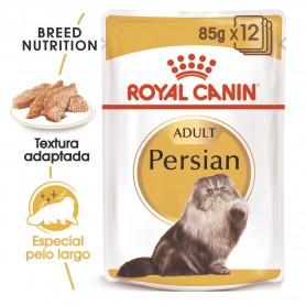 comida húmeda Royal Canin para gatos Persian
