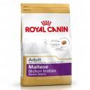 Royal Canin Maltese - Bichón Maltés
