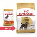 Royal Canin Miniature Schnauzer
