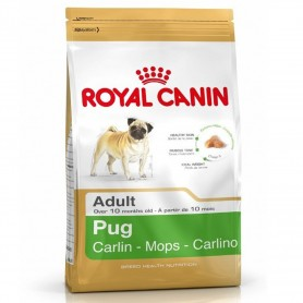 Royal Canin Pug - Carlino