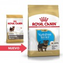 Royal Canin Yorkshire Terrier Junior 29