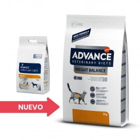 Advance Weight Balance