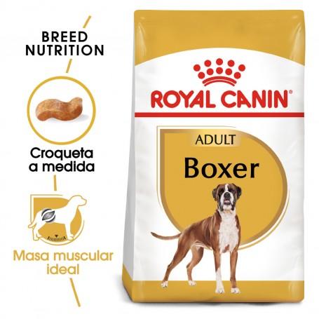 Royal Canin Boxer