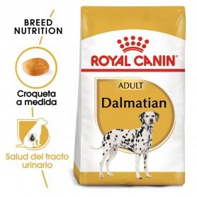 Royal Canin Dalmata Adulto
