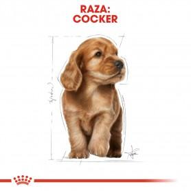 Royal Canin Puppy Cocker