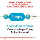 Royal Canin Dalmata Puppy