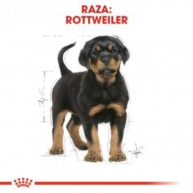 Royal Canin Rottweiler Puppy