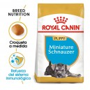 Royal Canin Miniature Schnauzer Puppy