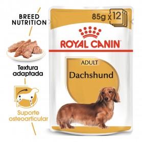 Royal Canin Dachsund comida...