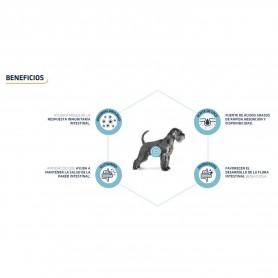 Pienso Advance Gastroenteric ofrece los mejores beneficios para tu perro