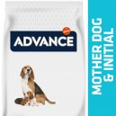 Advance Mother dog & Initial