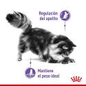 Cortauñas de tijeras para perros y gatos