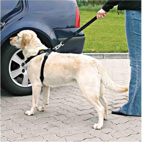 Correa extensible estampados variados para perros
