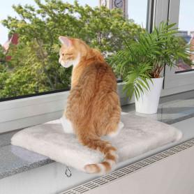 Plataforma gatos, Ventana...