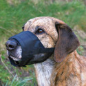 Cama con diseño touch dog de rayas grande para perros