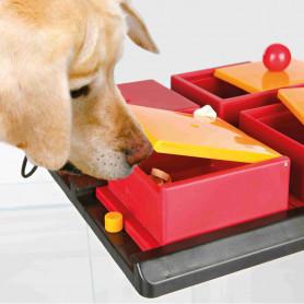 Dog Activity Poker Box 1