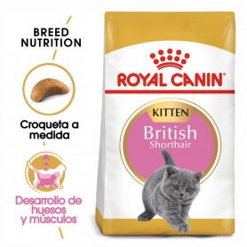 Royal Canin Kitten British...