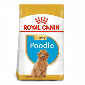 Royal Canin Poodle Puppy...