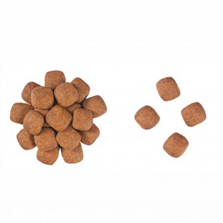 Rollitos Heno & Zanahoria, 3 ud