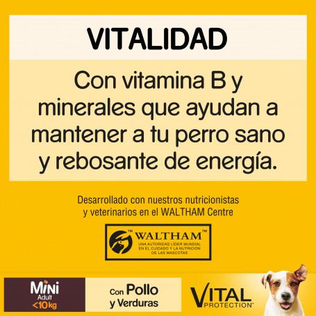 Royal Canin Veterinary Diet Feline Renal Buey (bolsita), 85 gr