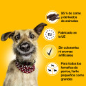 Eukanuba Veterinary Diet Intestinal Perro (seco)