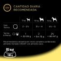 Libra Kitten, 1.5 Kg