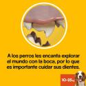 Taza de perro con chihuahua Bad Dog - interior negro