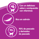 Purina Veterinary Diet HA Hypoallergenic Perro (seco)