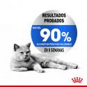 Hill's Science Plan Canine Mature Adult 7+ Senior Pollo (húmedo), 370 gr