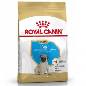 Royal Canin Pug Puppy...