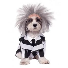 Disfraz de Beetlejuice, Ropa para perros, Disfraces