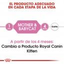 Pienso Royal Canin Feline Health Nutrition Babycat para gatitos o gatas lactantes