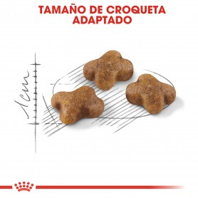 Croqueta pienso Royal Canin Feline Health Nutrition Kitten para gatos