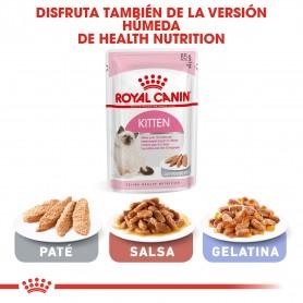 también comida húmeda Royal Canin Feline  para gatos