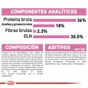 Ingredientes pienso Royal Canin Feline Health Nutrition Kitten 36