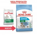 Royal Canin Mini Starter, Pienso para perros