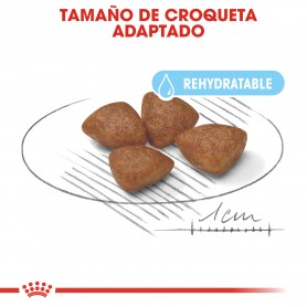 croquetas Royal Canin Mini Starter