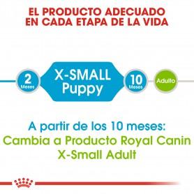 Pienso Royal Canin X-Small Junior desde los 10 meses