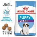 Pienso Royal Canin Giant Puppy para cachorros grandes