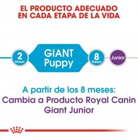Royal Canin Giant Puppy, para cachorros grandes