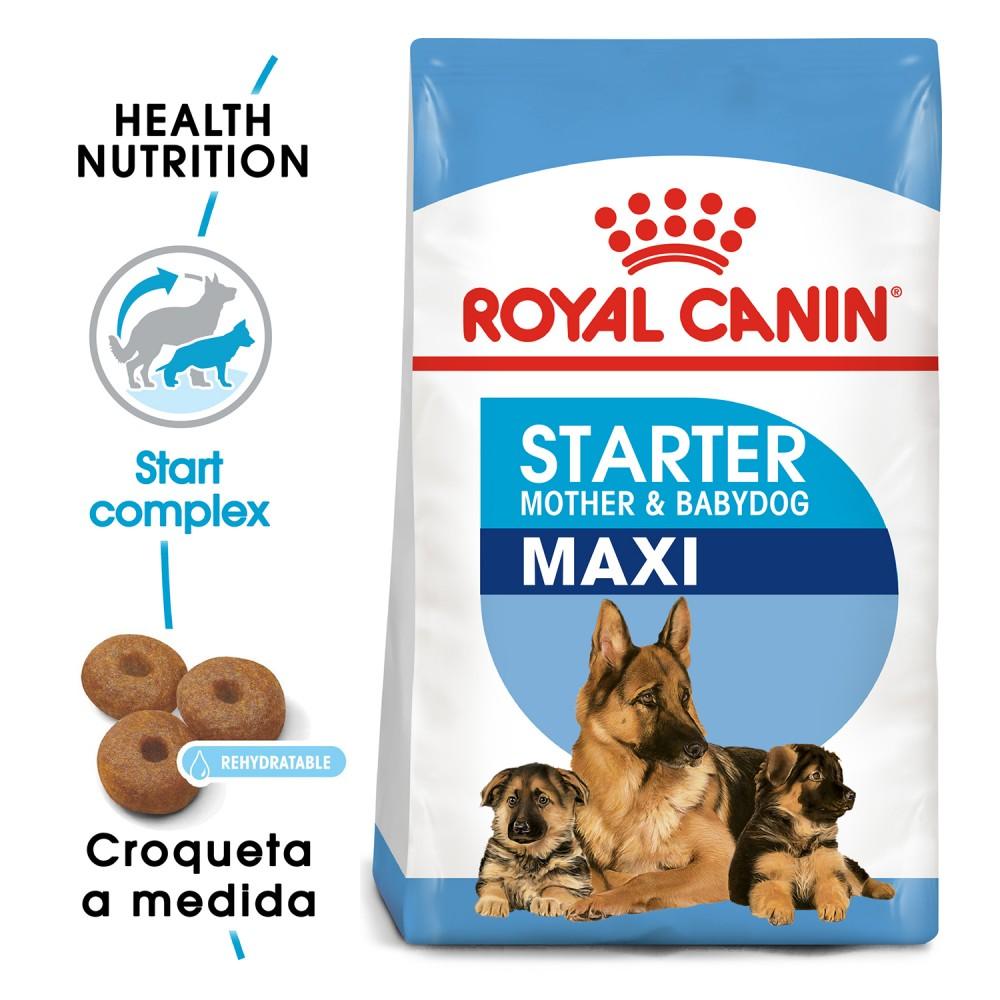 Pienso Royal Canin Maxi Starter para perros