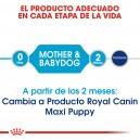 El mejor pienso Royal Canin para tus perros