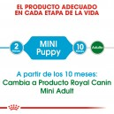 Royal Canin Mini Junior, pienso para cachorros mini