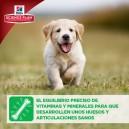 Pienso Hill's Science Plan Puppy Healthy Development ayuda con el crecimiento de los huesos