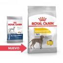 Pienso para perros Royal Canin Maxi Dermacomfort