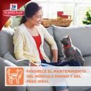 Hill's Science Plan Feline Young Adult Sterilized Cat Pollo, pienso para gatos esterilizados