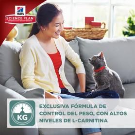 Hill's una de las mejores marcas de piensos para  gato del mercado