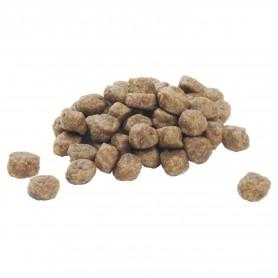 Croquetas de pienso Purina Pro Plan Small & Mini Puppy
